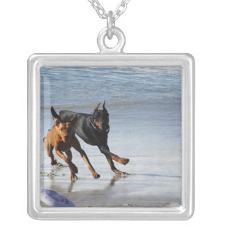 Doberman and Rhodesian Ridgeback - Frisbee Play Personalized Necklace
