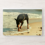 """Doberman at the Beach Painting Image HP Laptop Skin<br><div class=""""desc"""">Digital painting of a beautiful Doberman Pinscher frolicking on the beach as the ocean waves wash up on the shore and leaving paw prints in the sand.</div>"""