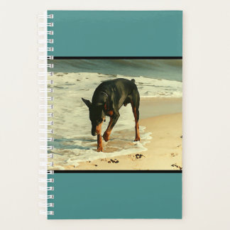 Doberman at the Beach Painting Image Planner