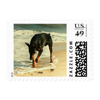 Doberman at the Beach Painting Image Postage Stamp