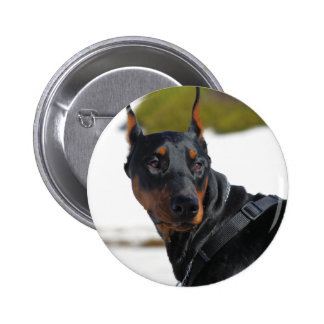Doberman - Black - Bogie Buttons