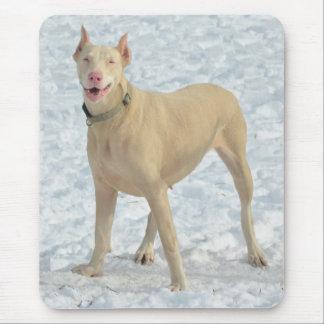 Doberman blanco sonriente tapete de ratón