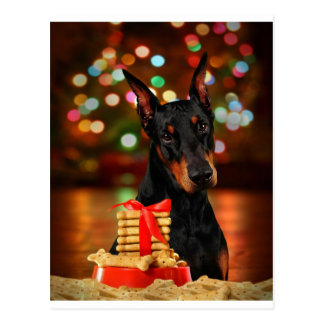 Doberman Christmas Postcard
