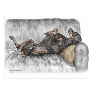 Doberman divertido en el sofá tarjetas postales