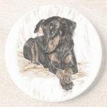 Doberman Dog Natural Ears Sandstone Coaster