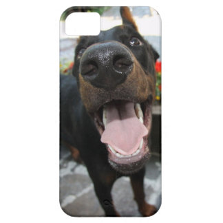 Doberman Dog Nose iPhone 5 Case