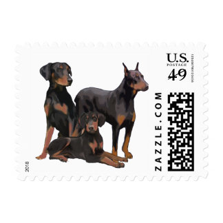Doberman Dogs Postage stamp