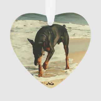 Doberman en la imagen de la pintura de la playa