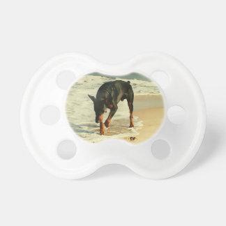 Doberman en la imagen de la pintura de la playa chupete de bebe