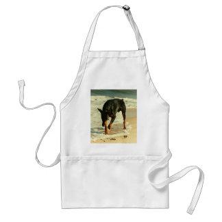 Doberman en la imagen de la pintura de la playa delantal