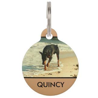 Doberman en la imagen de la pintura de la playa identificador para mascotas