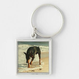 Doberman en la imagen de la pintura de la playa llavero cuadrado plateado