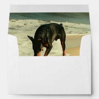 Doberman en la imagen de la pintura de la playa sobres
