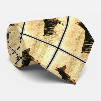 Doberman en las cañas secas que pintan imagen corbata