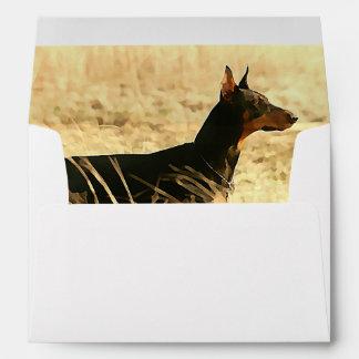Doberman en las cañas secas que pintan imagen sobres