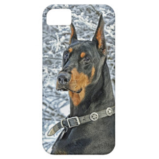 Doberman Frosty Day iPhone 5 Cases