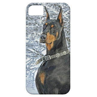 Doberman Frosty Day iPhone SE/5/5s Case