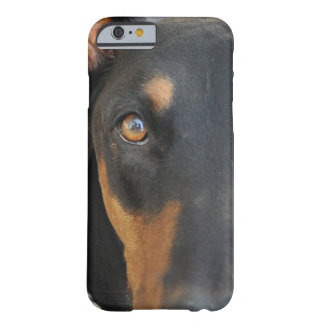 Doberman Funda Para iPhone 6 Barely There