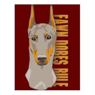 Doberman Head, Fawn Dogs Rule Postcard