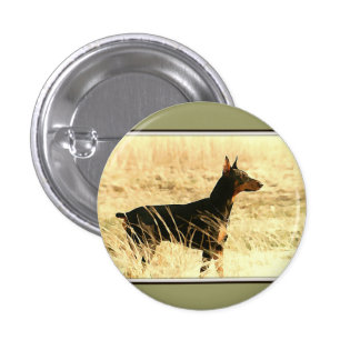 Doberman in Dry Reeds Painting Image 1 Inch Round Button