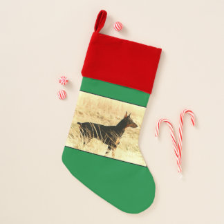 Doberman in Dry Reeds Painting Image Christmas Stocking