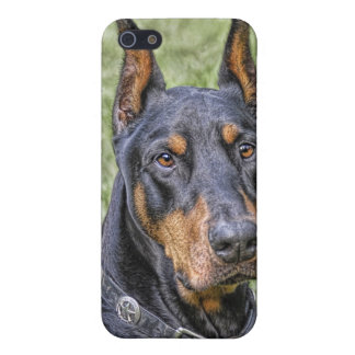 Doberman in Grass Case For iPhone SE/5/5s