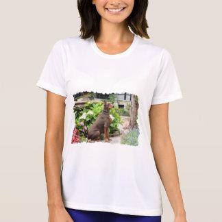 Doberman - In the Church Garden T Shirts