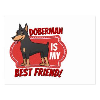 Doberman is my best friend postcard