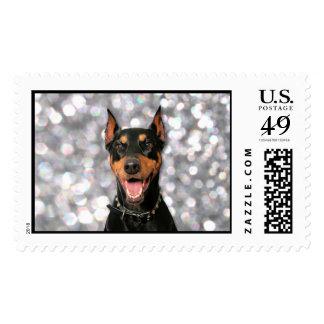 Doberman - Megyan Postage Stamp