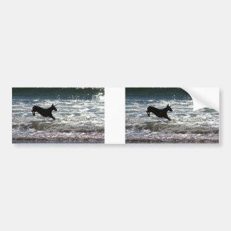 Doberman - negro - salto del océano pegatina de parachoque