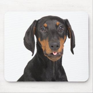 doberman pincher puppy mouse pad
