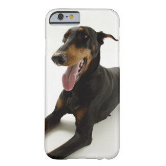 Doberman Pinscher 2 Barely There iPhone 6 Case