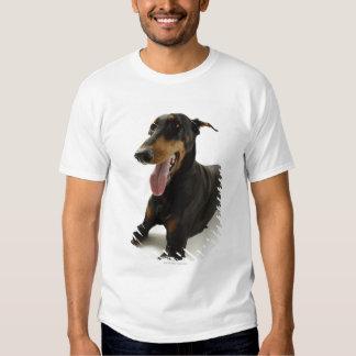 Doberman Pinscher 2 T-shirt