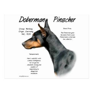 Doberman Pinscher (blk) History Design Post Card