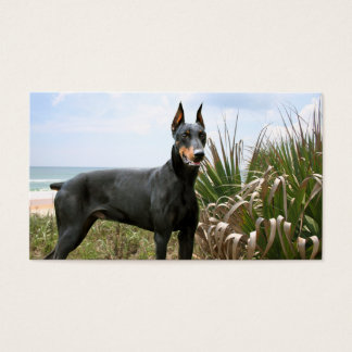 Doberman Pinscher Breeder Business Card