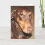 Doberman Pinscher Card