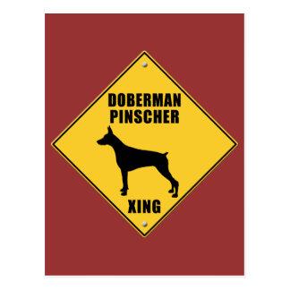 Doberman Pinscher Crossing (XING) Sign Postcard