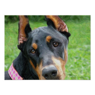Doberman Pinscher Digital Art Poster