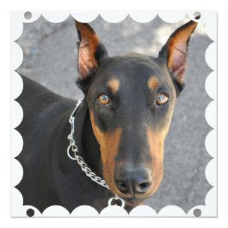 """Doberman Pinscher Dog Invitation 5.25"""" Square Invitation Card"""