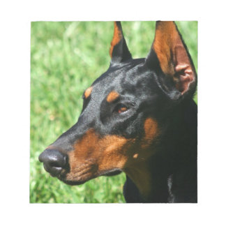 Doberman Pinscher dog Notepad