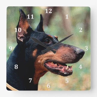 Doberman Pinscher in the Woods Square Wall Clock