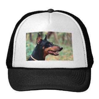 Doberman Pinscher in the Woods Trucker Hat