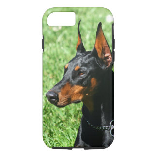 Doberman Pinscher iPhone 8/7 Case