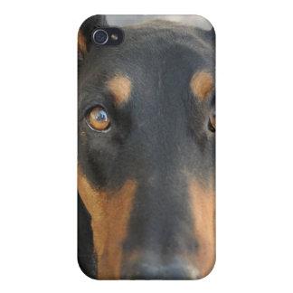 Doberman Pinscher iPhone Case iPhone 4/4S Case
