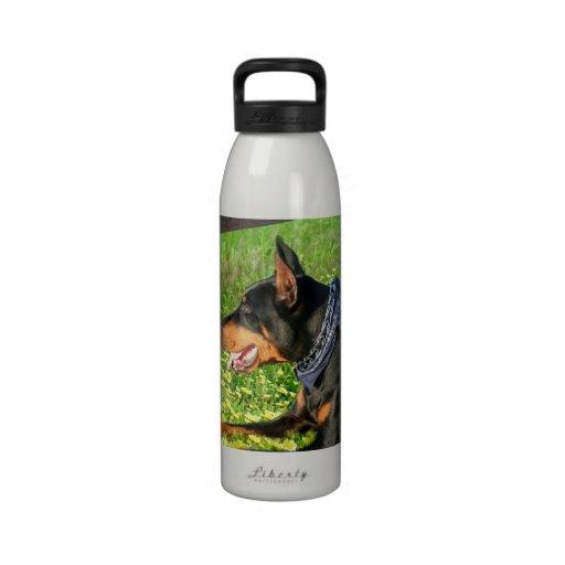 Doberman Pinscher Liberty water bottle Water Bottles