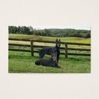 Doberman Pinscher Lover Business Card