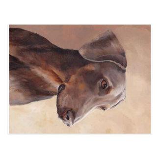 Doberman Pinscher Original Dog Art Postcard
