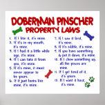 DOBERMAN PINSCHER PL2 POSTER