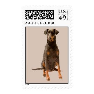 Doberman Pinscher Postage Stamp