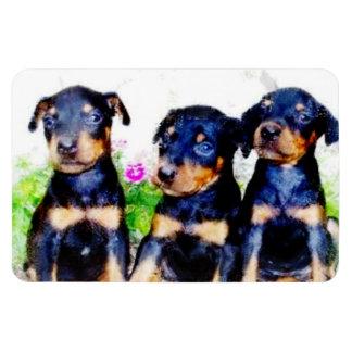 Doberman Pinscher puppies Rectangular Photo Magnet
